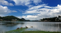 贵州省实黔农业创新发展有限公司百花湖乡美丽乡村现代农业观光园项目